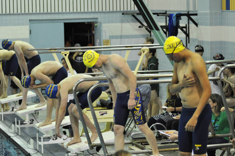 Homer junior Teddy Handley (center) prepares for the start of the 100 meter freestyle Saturday, Sept. 9, 2017 at the Homer Invitation swim meet at the Kate Kuhns Aquatic Center in Homer, Alaska. (Photo courtesy Paul Story)
