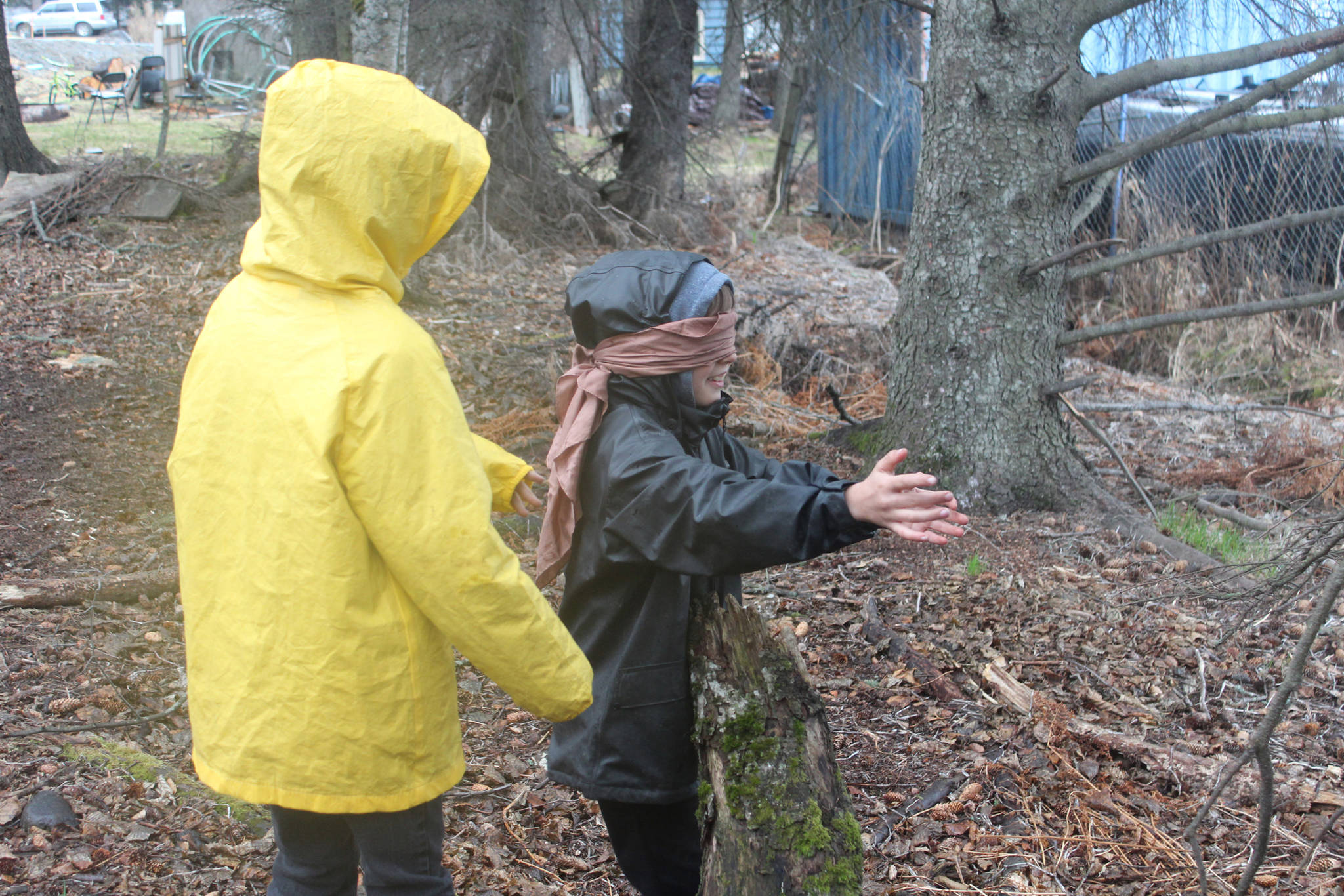 """Charles Robinette, left, leads classmate Fox Strobel through the woods behind Little Fireweed Academy while Strobel is blindfolded during a game called """"Sneaky Sneaky Squirrel"""" on Tuesday, April 24, 2018 at the school in Homer, Alaska. The Fireweed students are participating in several outdoor games and lessons through a mentorship program with Homer High School students. (Photo by Megan Pacer/Homer News)"""