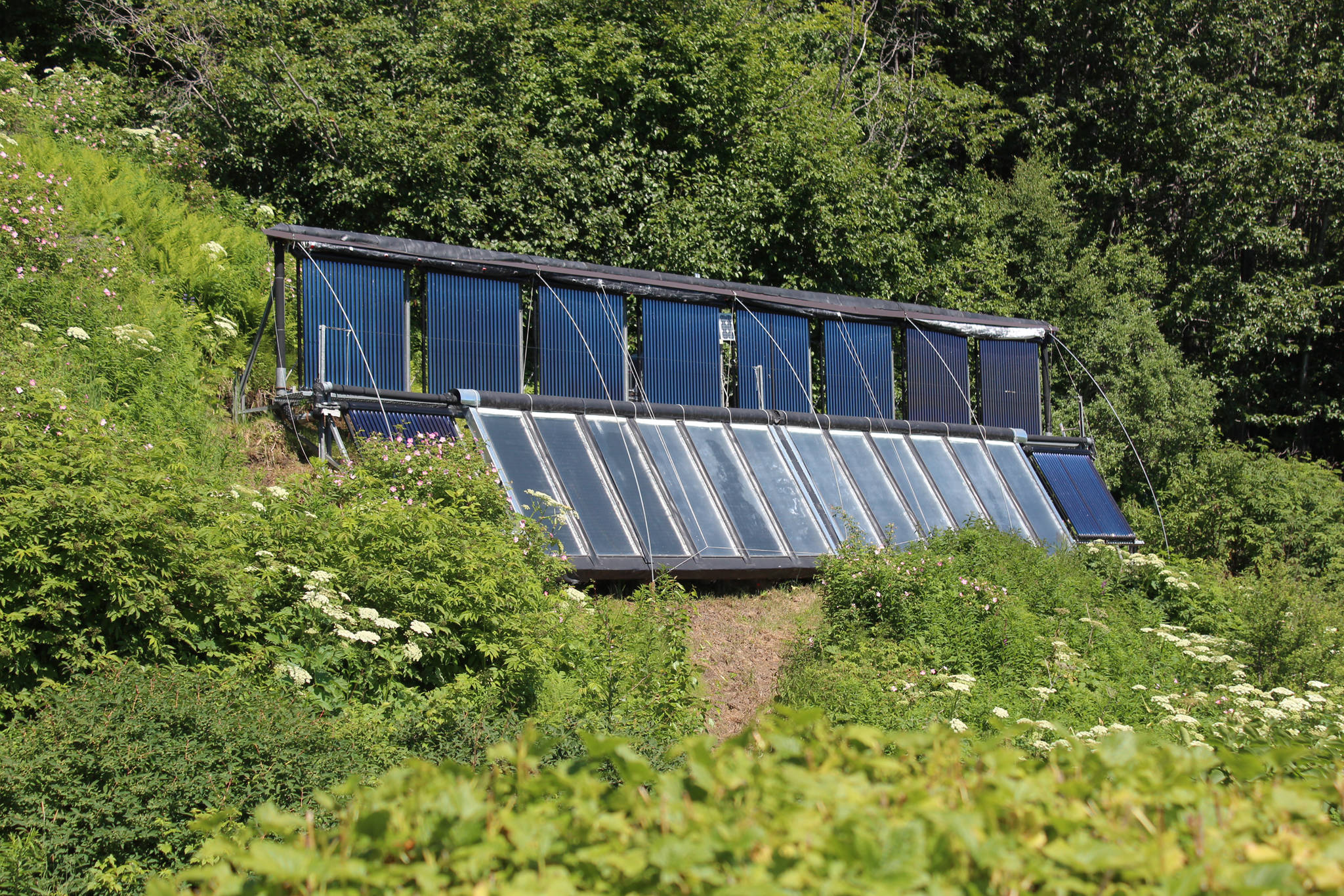 Several solar panels rest in the sun up an incline at the Dean family farm Friday, July 6, 2018 at their home off East End Road near Homer, Alaska. Artist Jeff Dean uses solar power to supplement a boiler system in place at their home, which was part of the annual Homer Solar Tour this year. (Photo by Megan Pacer/Homer News)