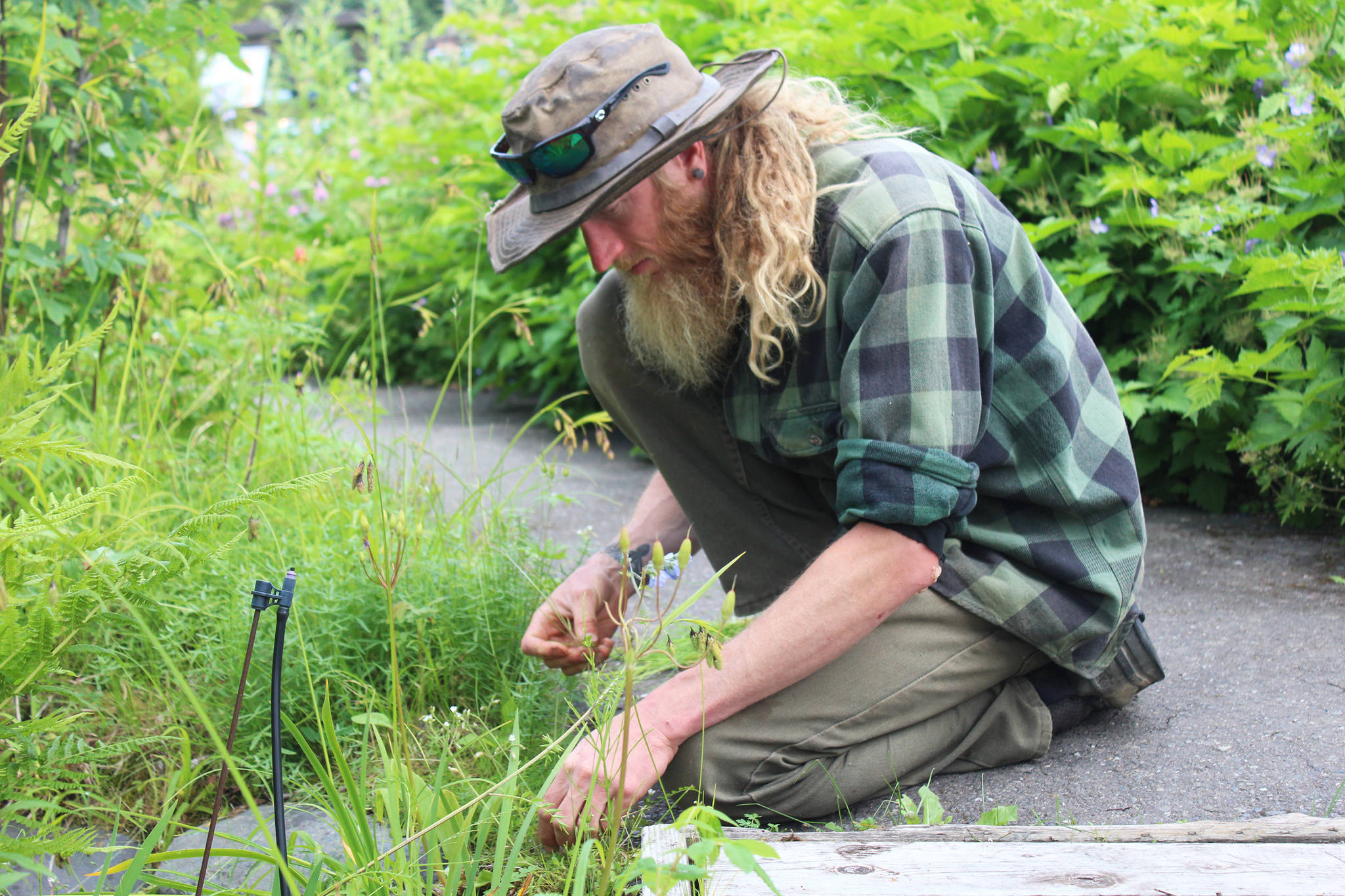 The Pratt's new gardener wants you to rediscover the many uses of plants