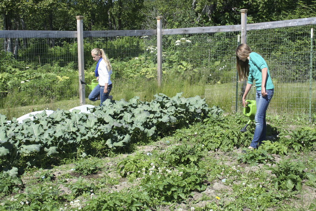 Jessica Sonnen, left, and Andie Sonnen, right, work in the Methodist Church garden.-Photo by Toni Ross