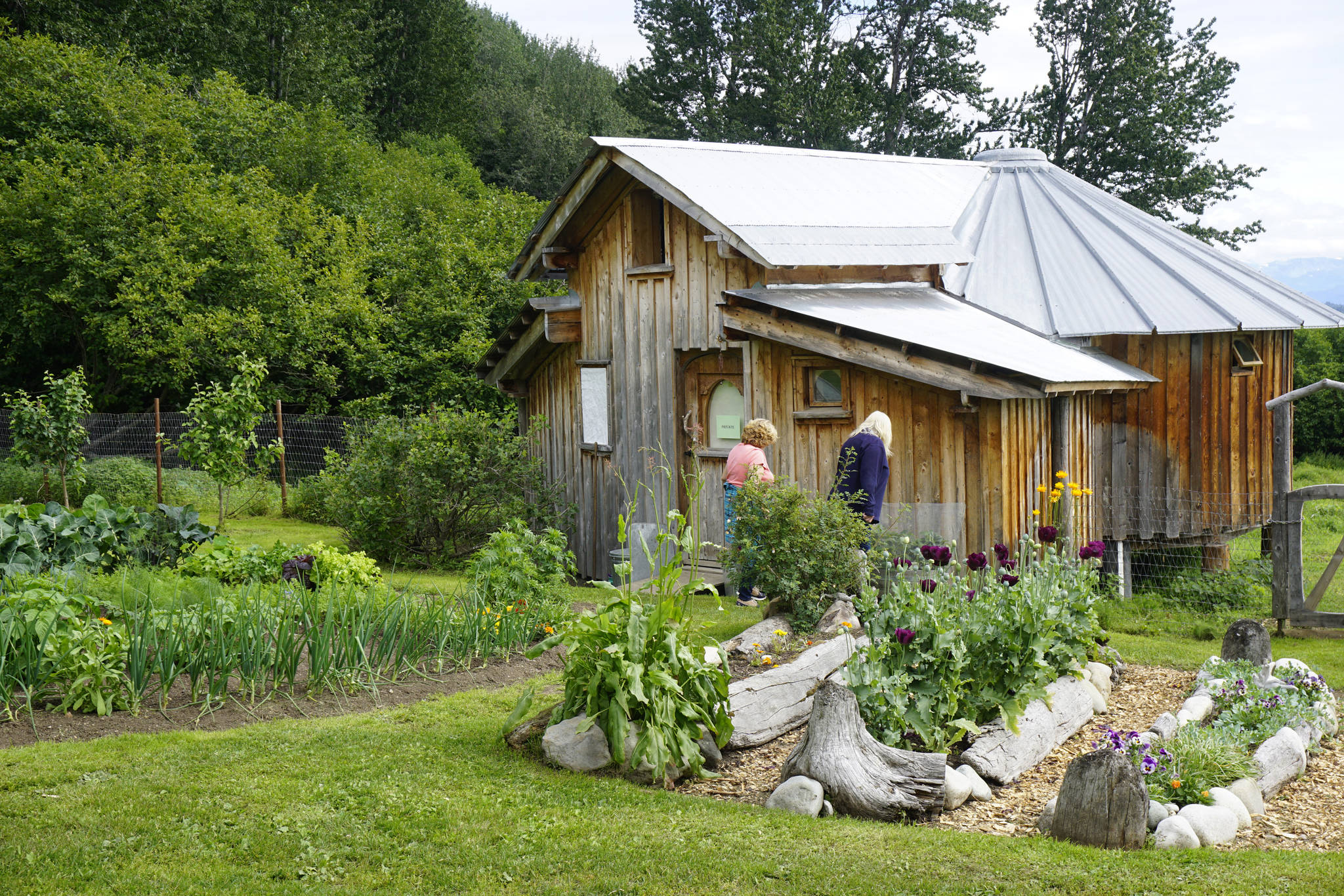 Drifwood and rock is used to line the gardens at the Jeff and Ranja Dean farm off East End Road in Homer, Alaska. It was one of five gardens featured in the July 29, 2018 Homer Garden Tour. (Photo by Michael Armstrong/Homer News)