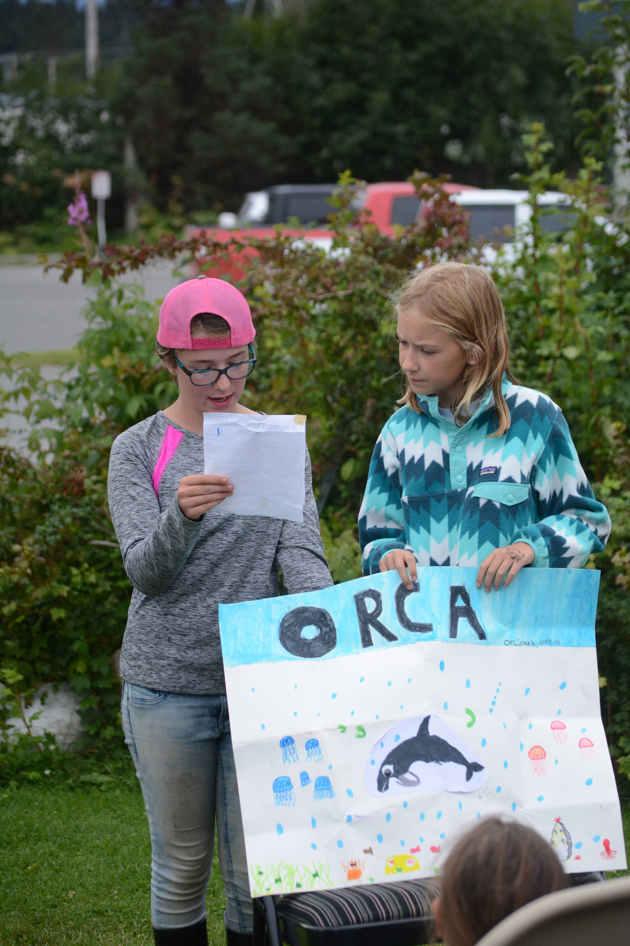 """At left, Jillian Tracy, 12, of Palmer, and Caroline Higgins, right, of Philadelphia, do a presentation on orca whales at the end of Marine Mammal Camp on Friday, Aug. 10, 2018, at the Center for Alaskan Coastal Studies in Homer, Alaska. The girls and other camps went to the camp at the Peterson Bay Field Station and then closed with talks on marine mammals. They also articulated a """"sea cat,"""" or lynx, skeleton with bone expert Lee Post. (Photo by Michael Armstrong/Homer News)"""