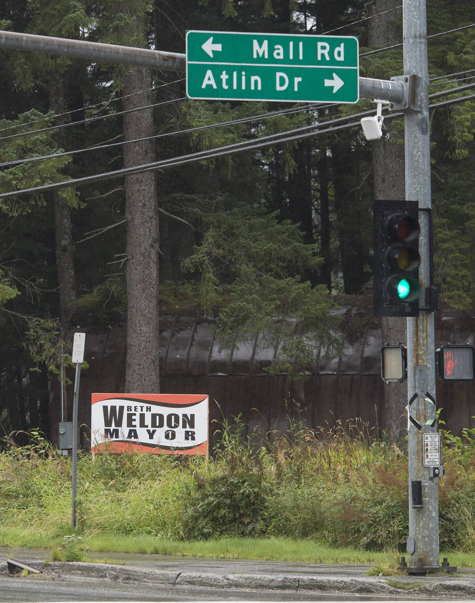 """A Beth Weldon election sign on Mendenhall Loop Road on Friday, Aug. 24, 2018. Alaska statute states signs on private or commercial property cannot be located within 660 feet of a state-maintained road or """"with the purpose of their message being read from the main traveled way."""" (Michael Penn   Juneau Empire)"""