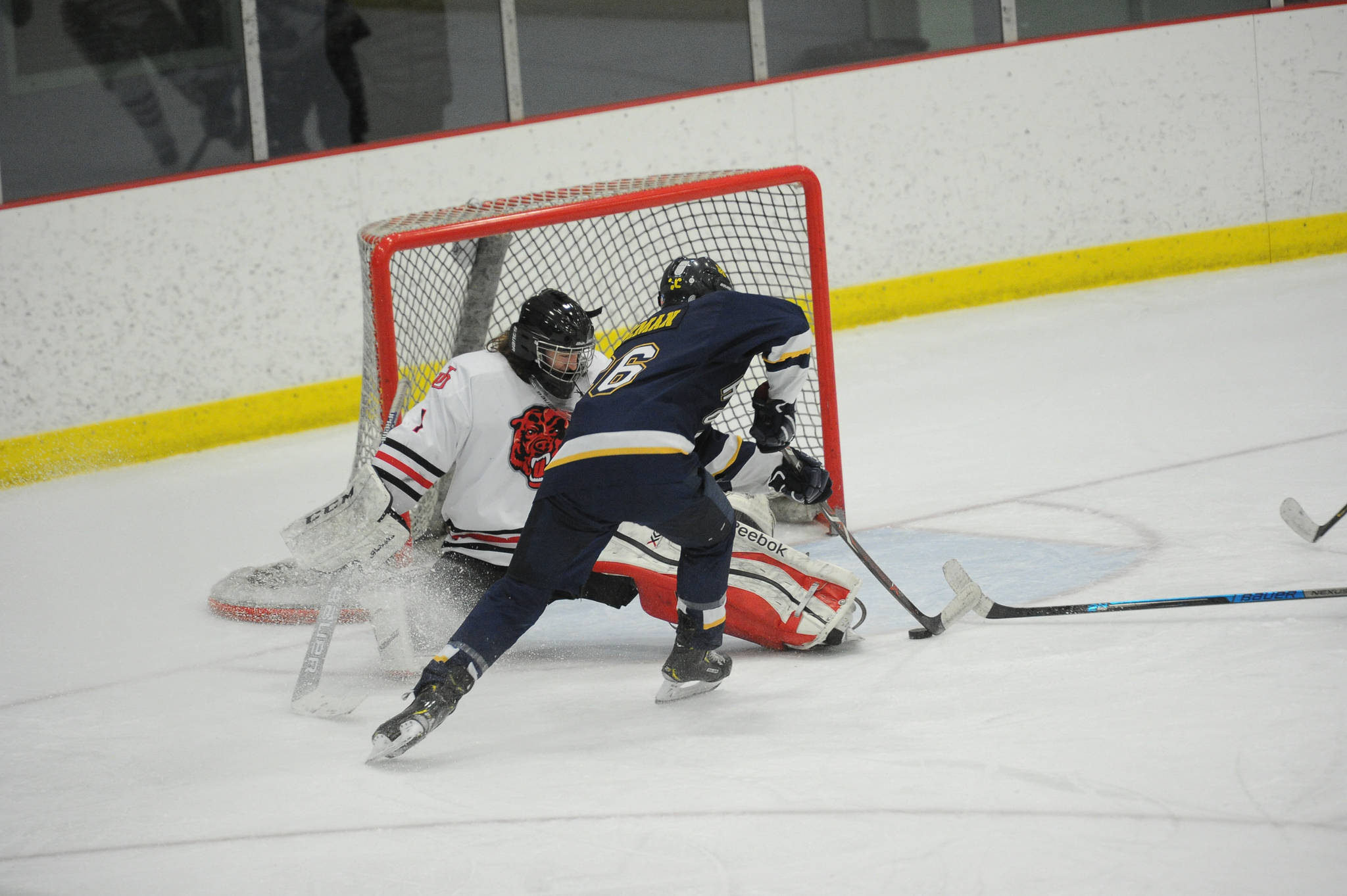 during the Crimson Bears' 3-0 semi-final loss in the Division II state hockey championships Friday, February 2, 2019. (Photo for the Empire by Michael Dinneen)
