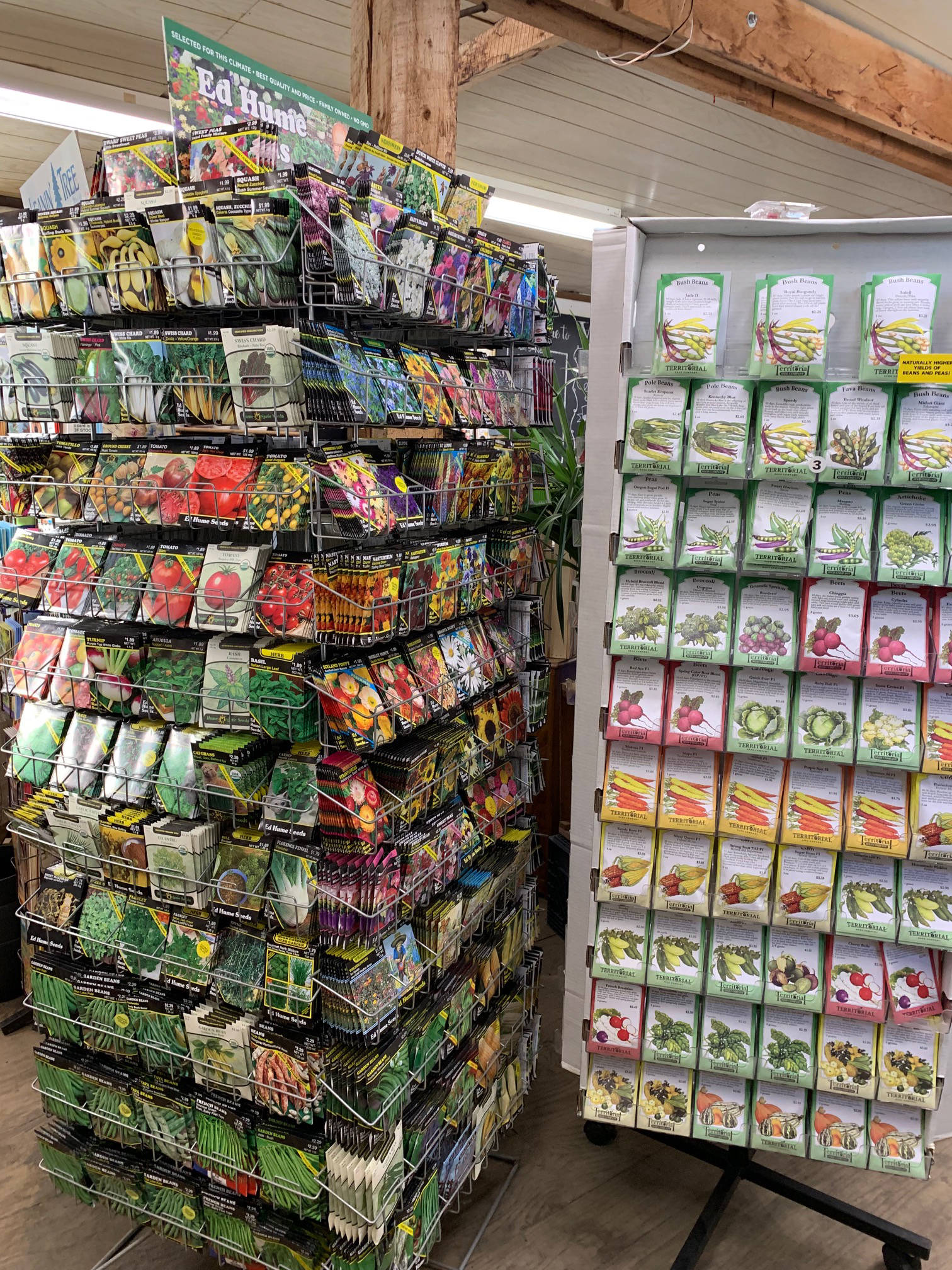 Seeds racks are everywhere. There are your favorite vegetables and flowers at your very fingertips. Take advantage of what Homer's local merchants have to offer, as shown here at the Wagon Wheel on Feb. 22, 2019, in Homer, Alaska. (Photo by Rosemary Fitzpatrick)