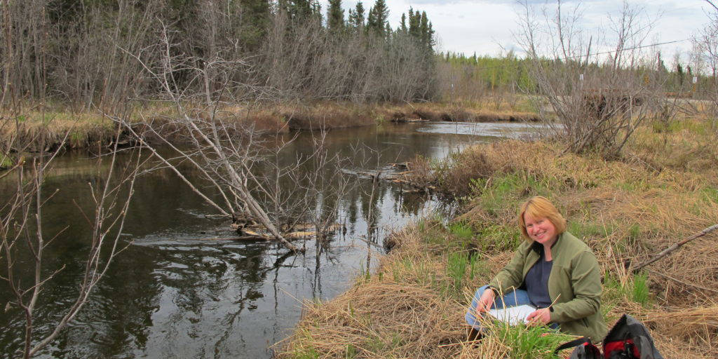 A Cook Inletkeeper volunteer does stream monitoring of Fish Creek, Alaska, in this 2011 file photo. (Photo provided/Cook Inletkeeper)