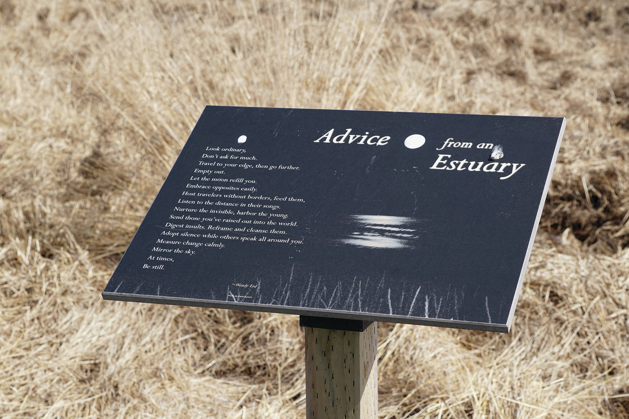 "Wendy Erd's poem, ""Advice from an Estuary,"" is on a plaque April 30, 2020, at Beluga Slough in Homer, Alaska. Erd wrote a series of poems in an artist's residency several years ago. (Photo by Michael Armstrong/Homer News)"