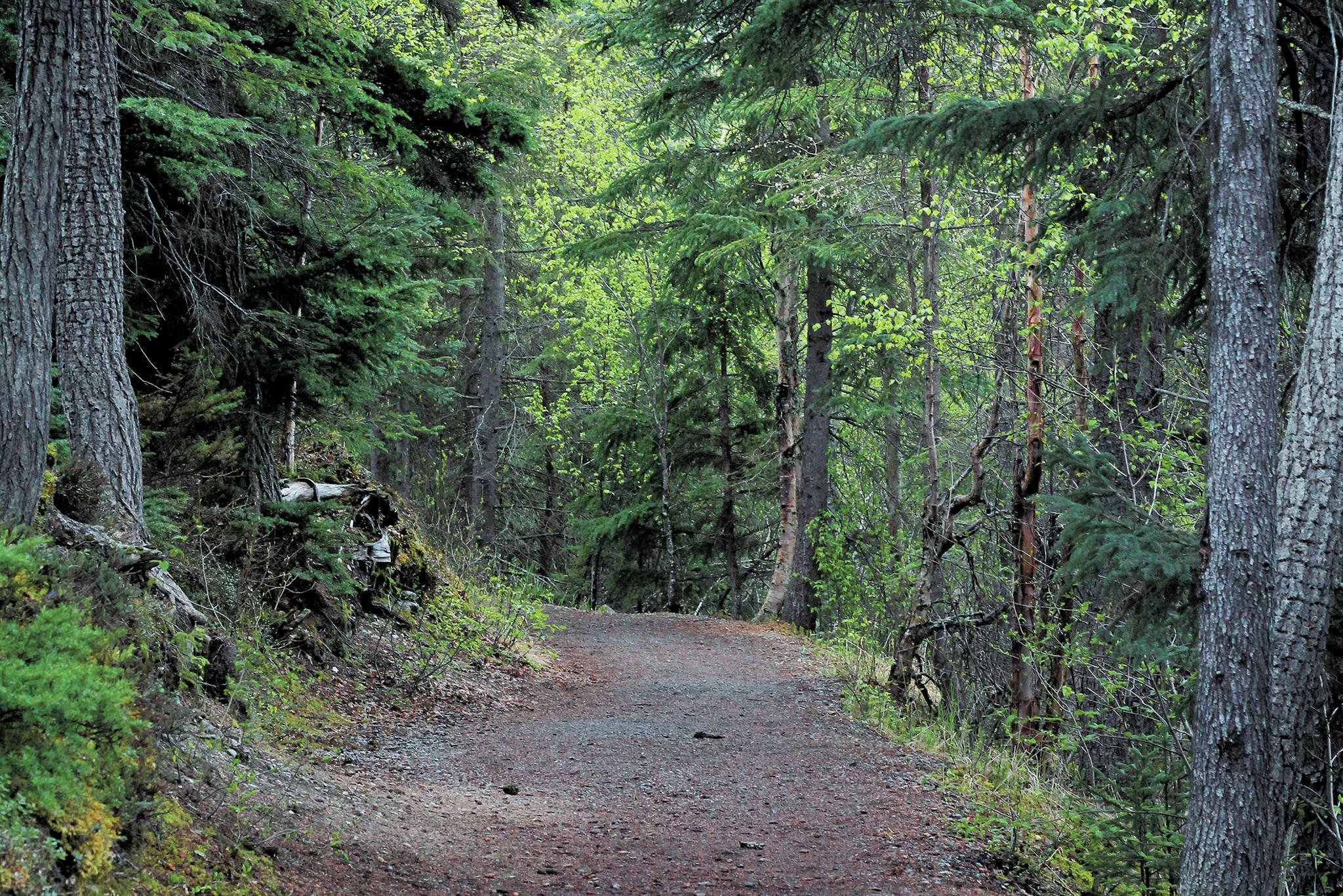Out of the Office: Trails that wind, hearts that find