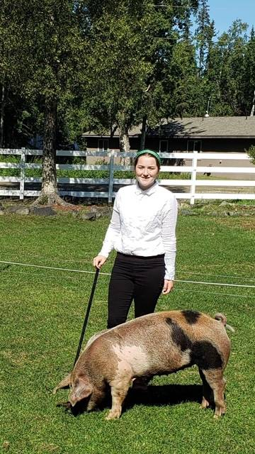 Kellee Martin with the North Road Rangers shows off her pig that will be sold at the 2020 Kenai Peninsula 4-H Junior Market Livestock Auction in this undated photo. (Photo courtesy Cassy Rankin)
