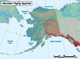 Range (shown in red) of the northern flying squirrel in Alaska. (Source: Alaska Fish and Game)