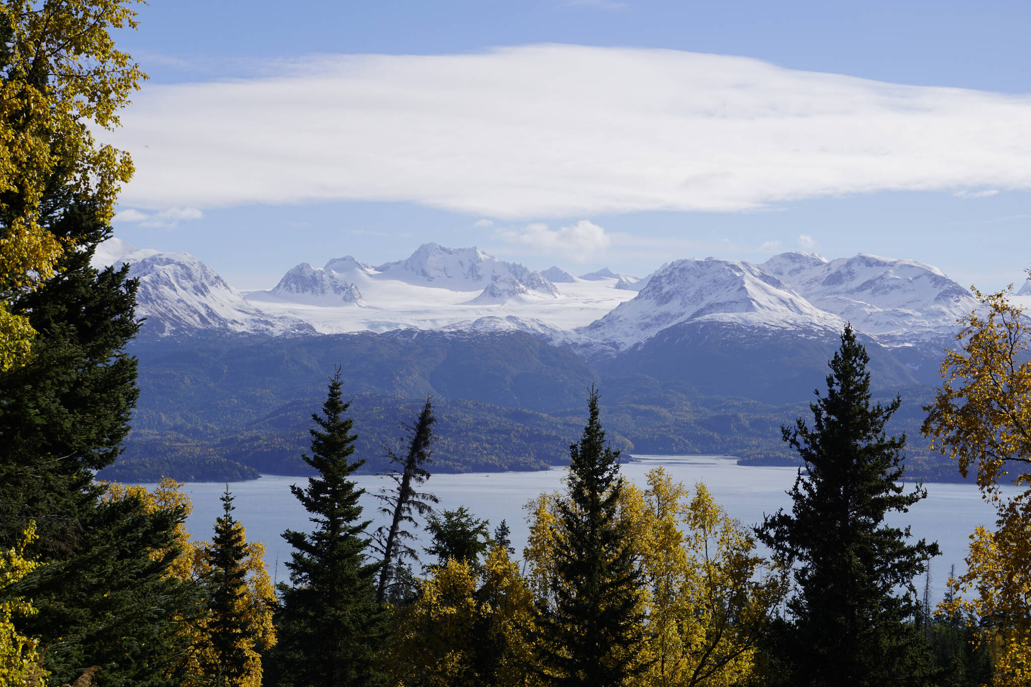 Golden-yellow birch trees and spruce frame a view of Aurora Lagoon and Portlock Glacier from a trail in the Cottonwood-Eastland Unit of Kachemak Bay State Park off East End Road on Sunday, Oct. 3, 2021, near Homer, Alaska. (Photo by Michael Armstrong)